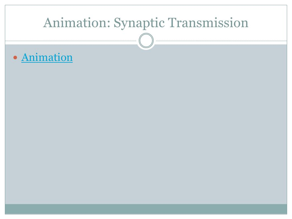 Animation: Synaptic Transmission