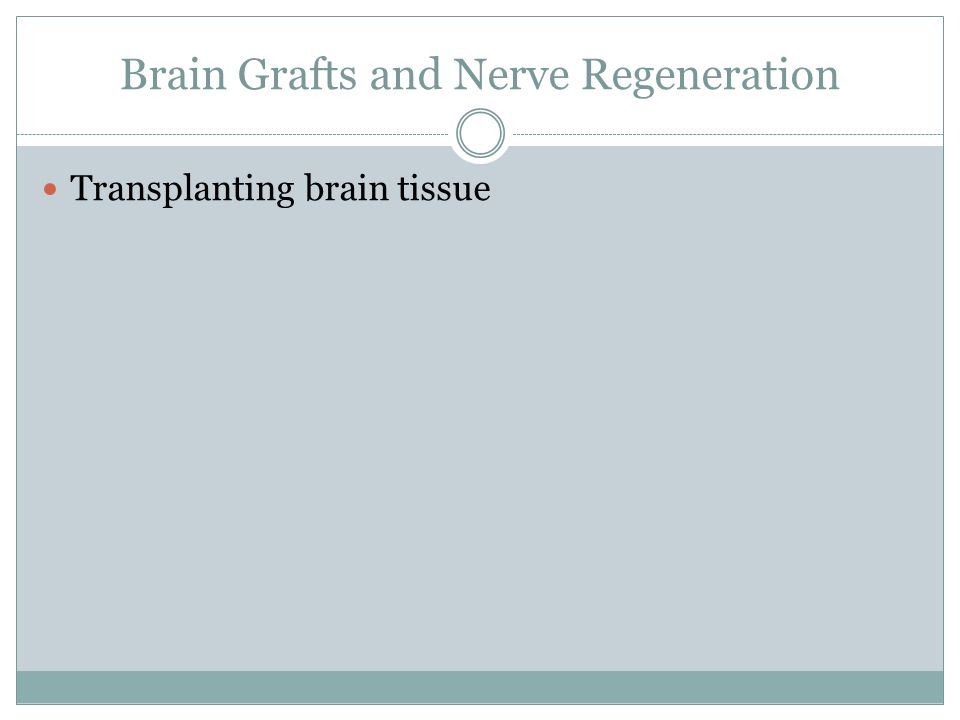 Brain Grafts and Nerve Regeneration