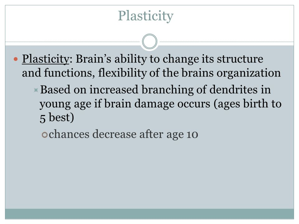 Plasticity Plasticity: Brain's ability to change its structure and functions, flexibility of the brains organization.
