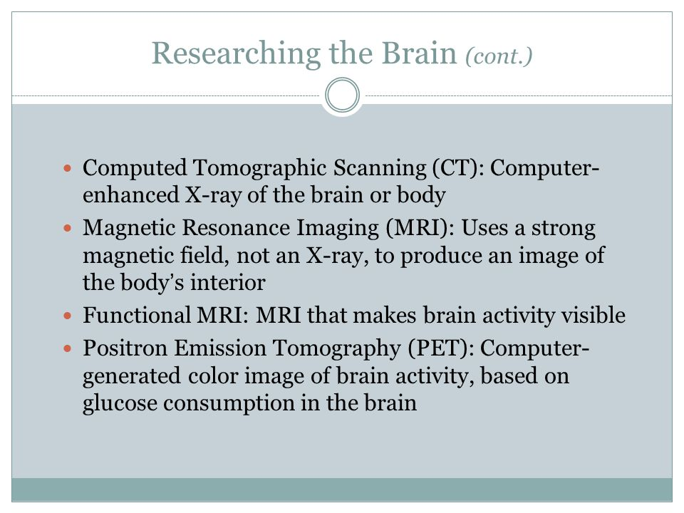 Researching the Brain (cont.)