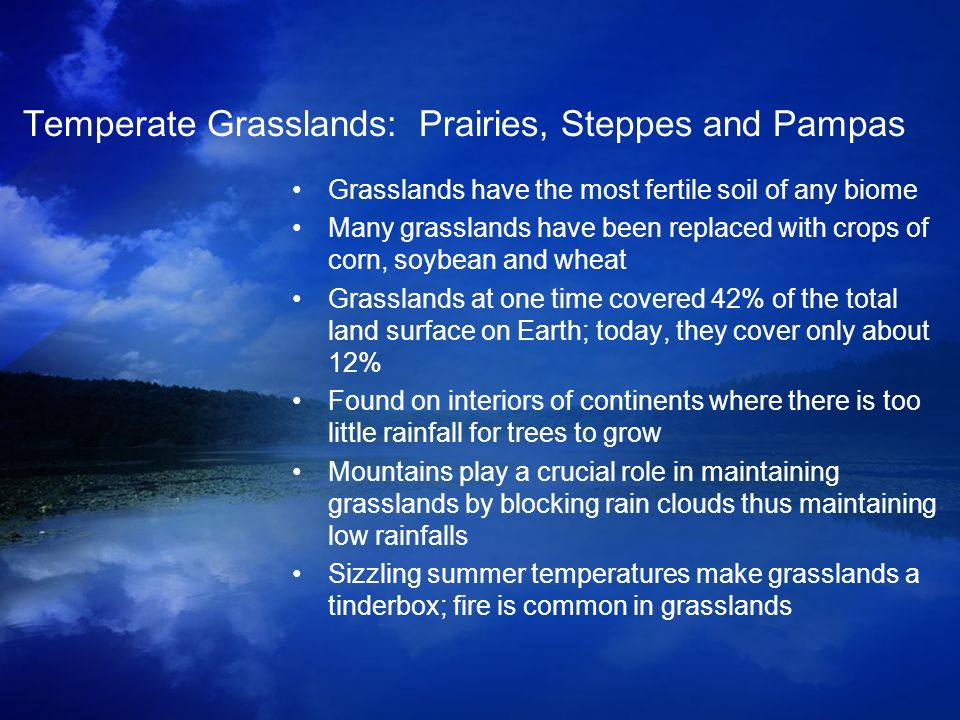 Temperate Grasslands: Prairies, Steppes and Pampas