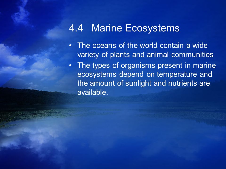 4.4 Marine Ecosystems The oceans of the world contain a wide variety of plants and animal communities.