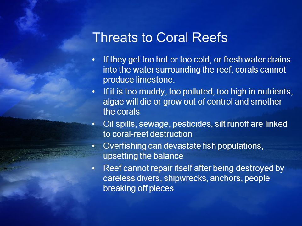 Threats to Coral Reefs If they get too hot or too cold, or fresh water drains into the water surrounding the reef, corals cannot produce limestone.