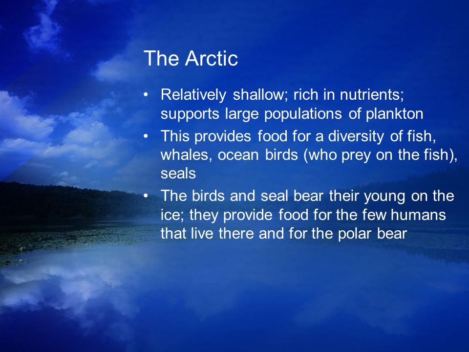 The Arctic Relatively shallow; rich in nutrients; supports large populations of plankton.