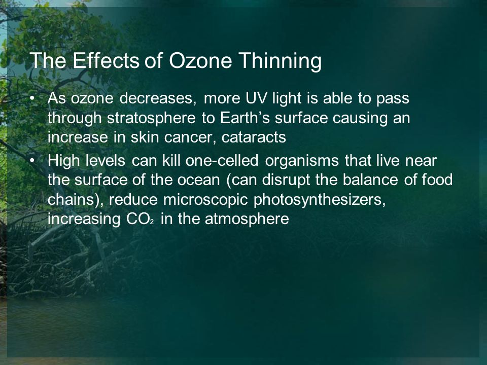 The Effects of Ozone Thinning