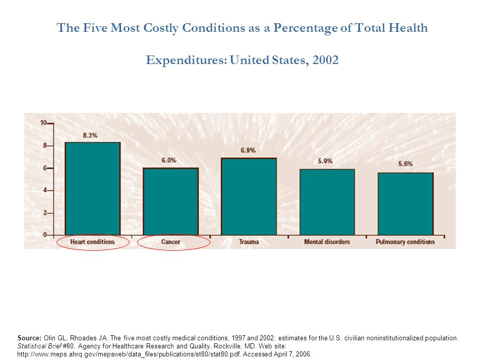 The Five Most Costly Conditions as a Percentage of Total Health Expenditures: United States, 2002
