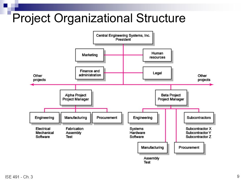 organizational structure in management pdf