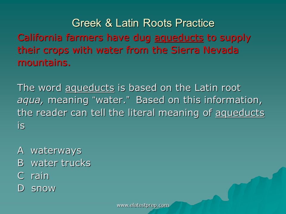 Greek & Latin Roots and Affixes - ppt video online download
