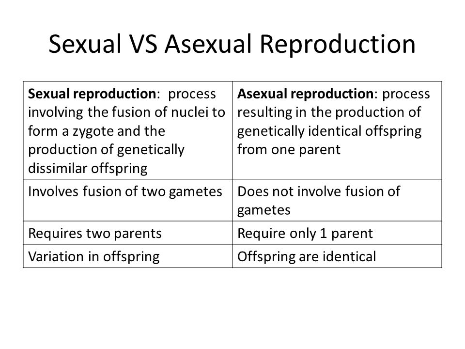 Difference between offspring asexual reproduction worksheet
