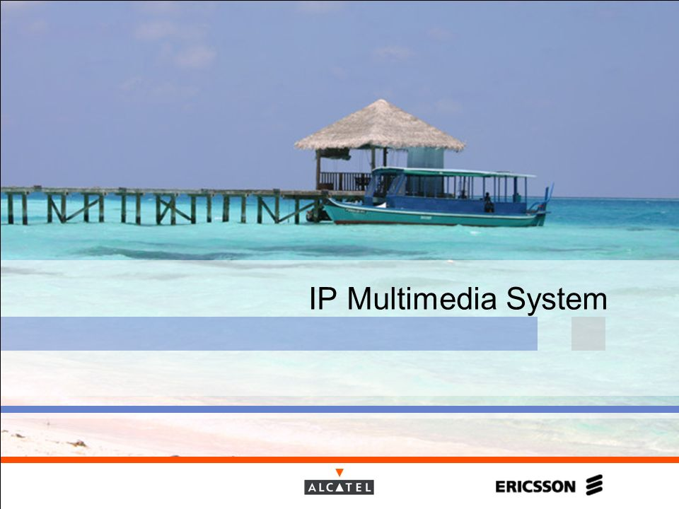 IP Multimedia System