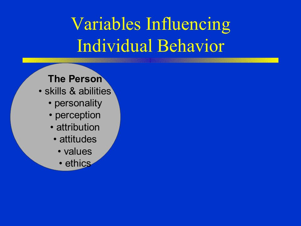 Chapter 3 Personality, Perception, & Attribution Nelson