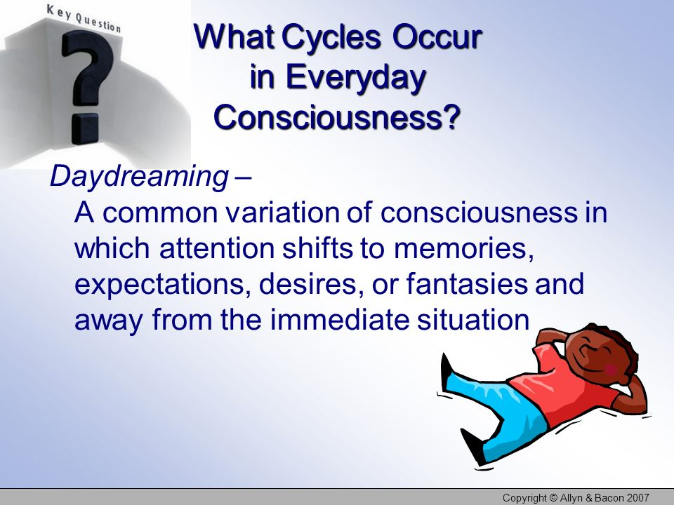 What Cycles Occur in Everyday Consciousness
