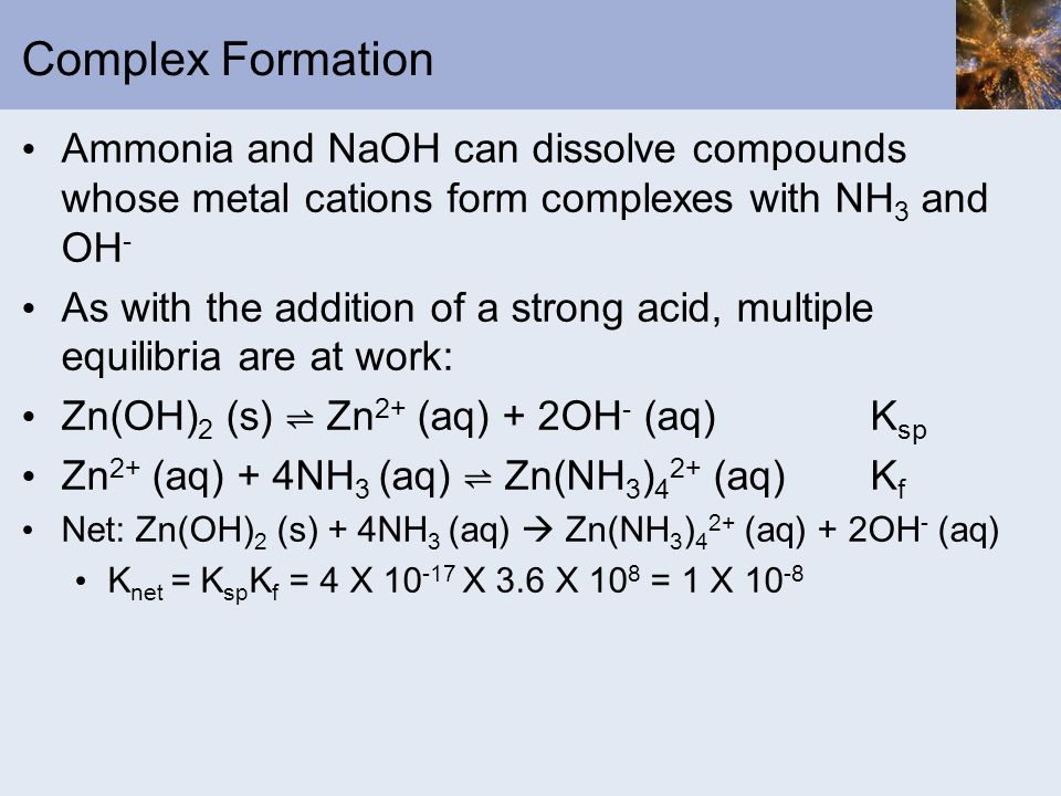 Complex Formation Ammonia and NaOH can dissolve compounds whose metal cations form complexes with NH3 and OH-