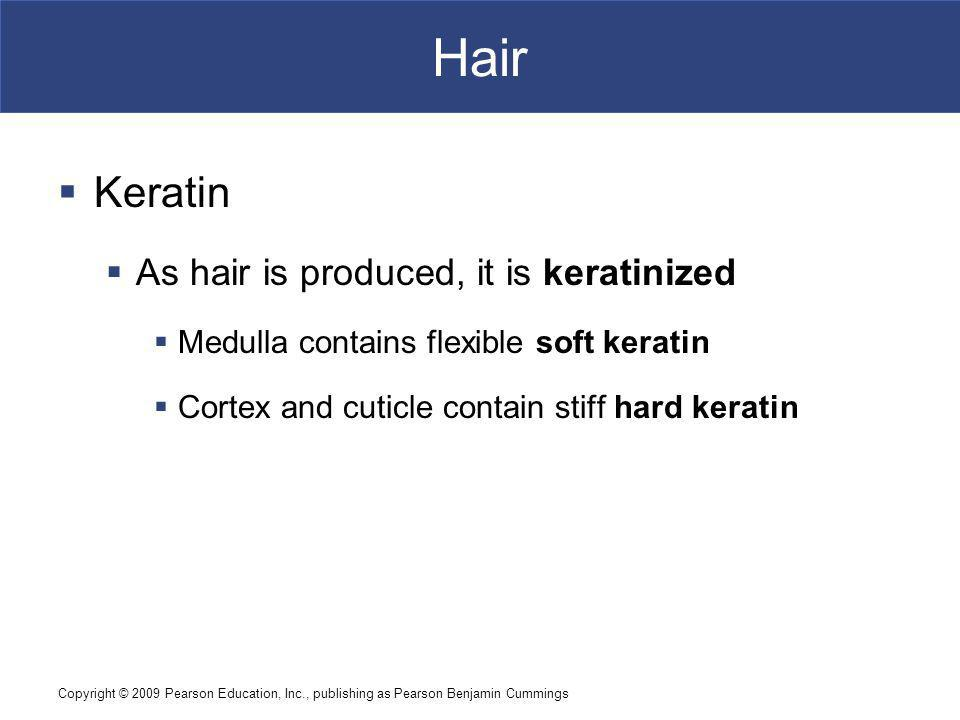 Hair Keratin As hair is produced, it is keratinized