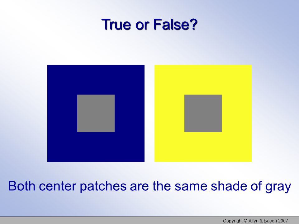 True or False Both center patches are the same shade of gray