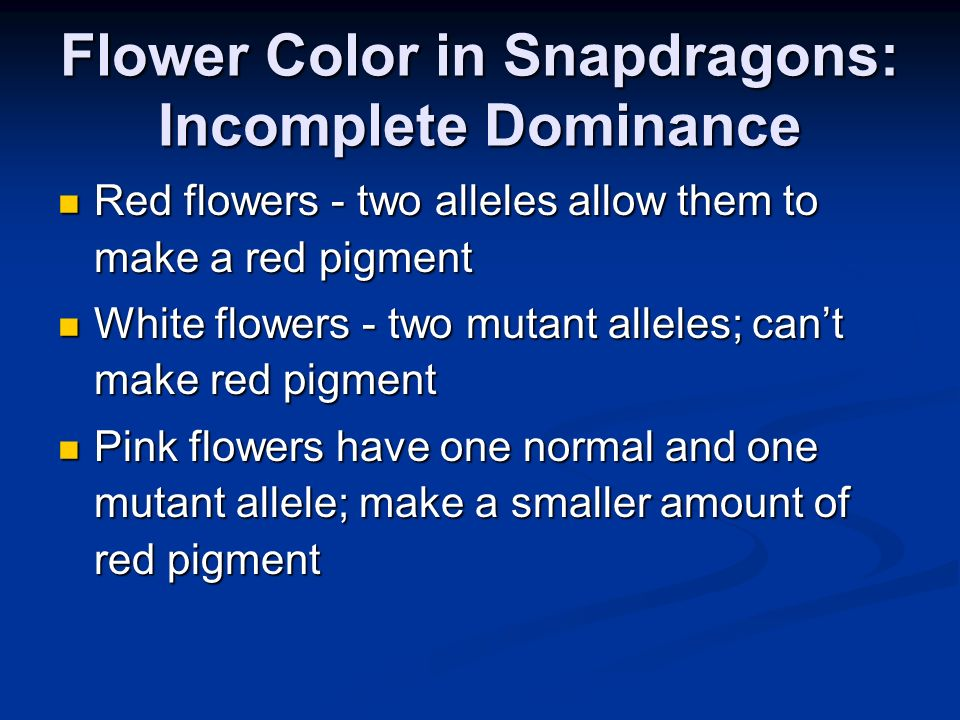 Flower Color in Snapdragons: Incomplete Dominance