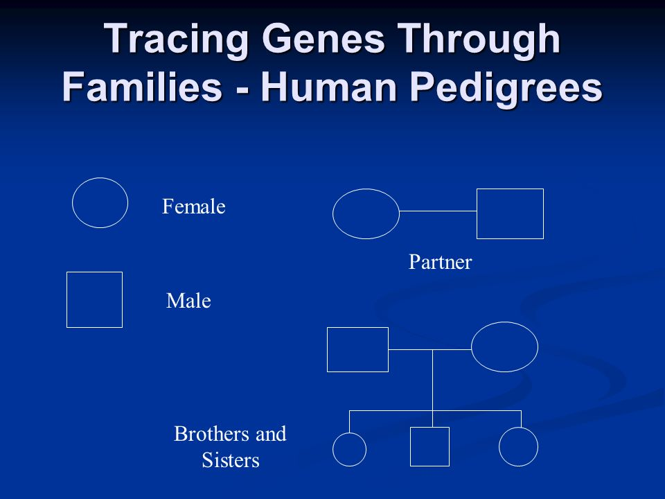 Tracing Genes Through Families - Human Pedigrees