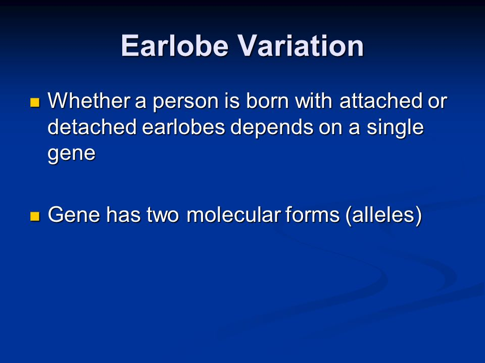 Earlobe Variation Whether a person is born with attached or detached earlobes depends on a single gene.