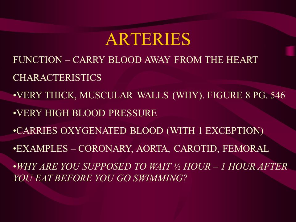 ARTERIES FUNCTION – CARRY BLOOD AWAY FROM THE HEART CHARACTERISTICS