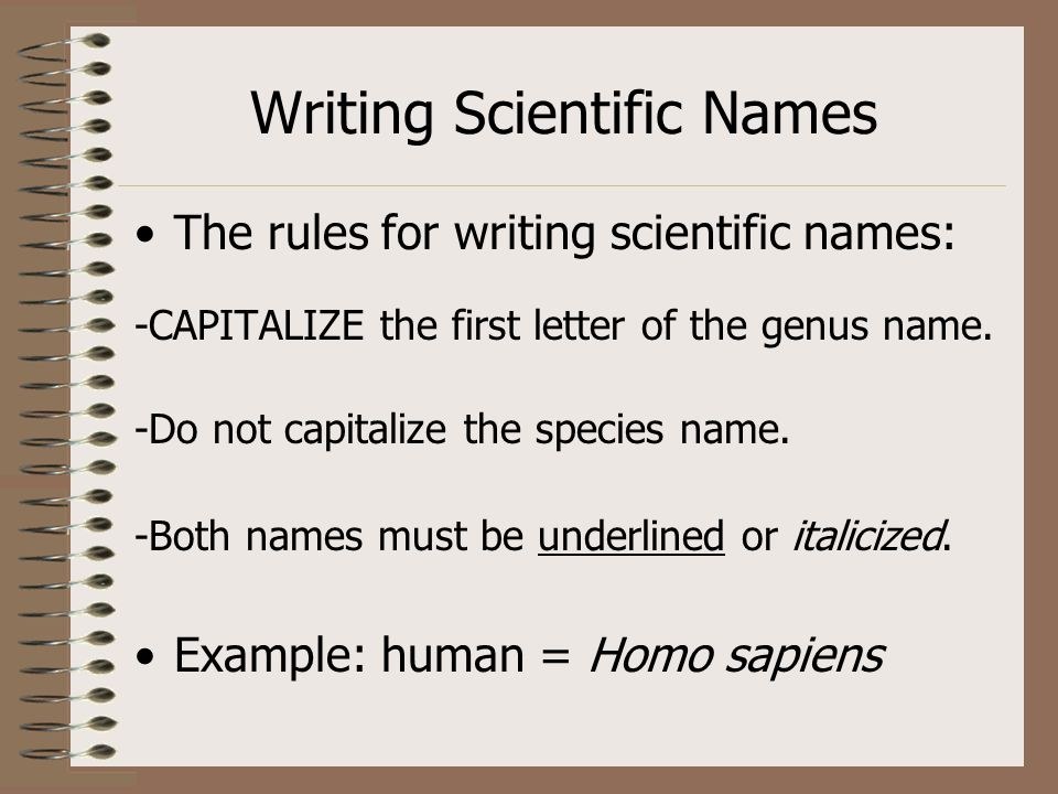 Writing Scientific Names