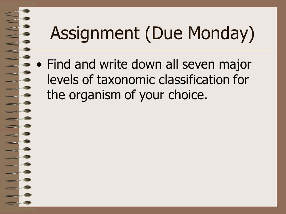 Assignment (Due Monday)