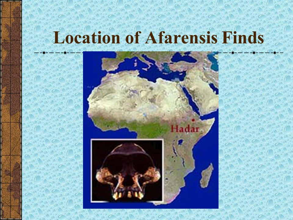 Location of Afarensis Finds