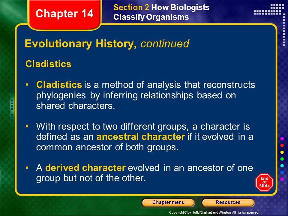 Evolutionary History, continued