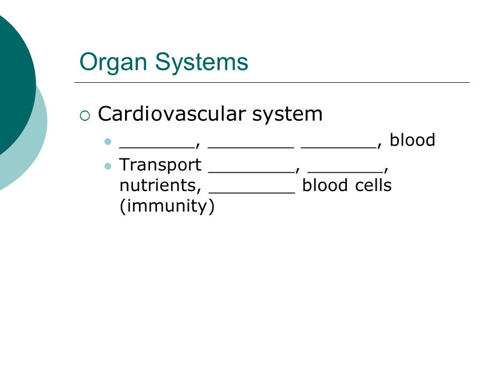 Organ Systems Cardiovascular system _______, ________ _______, blood