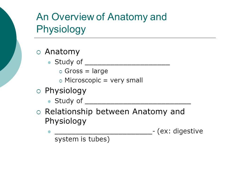 Chapter 1 The Human Body: An Orientation Original - ppt video online ...