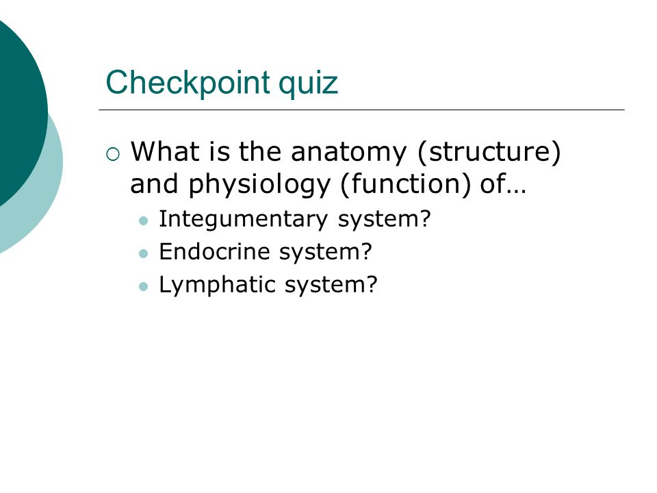 Checkpoint quiz What is the anatomy (structure) and physiology (function) of… Integumentary system