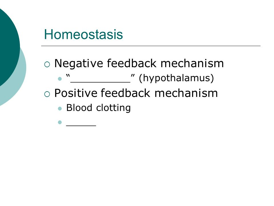 Homeostasis Negative feedback mechanism Positive feedback mechanism