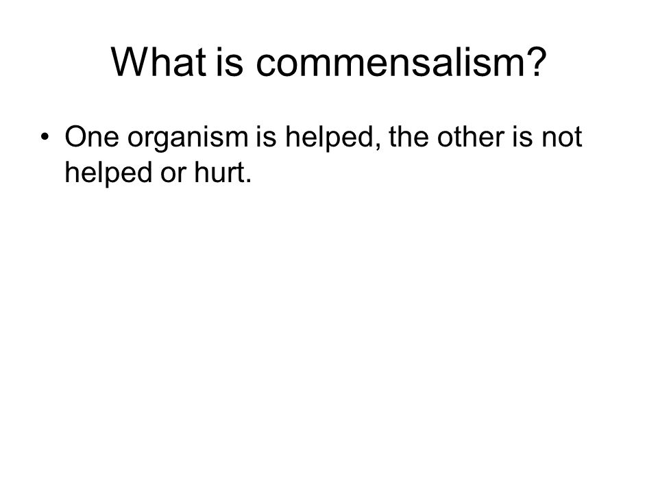 What is commensalism One organism is helped, the other is not helped or hurt.