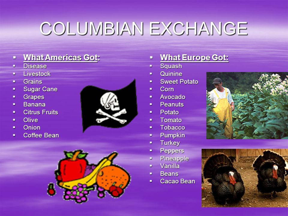 COLUMBIAN EXCHANGE What Americas Got: What Europe Got: Disease