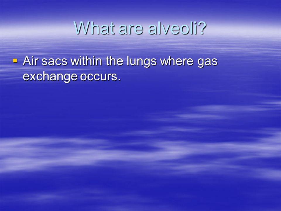 What are alveoli Air sacs within the lungs where gas exchange occurs.