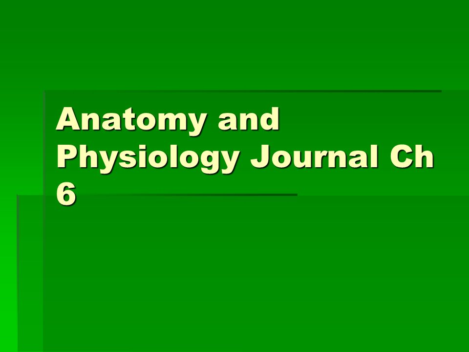 Anatomy and Physiology Journal Ch 6