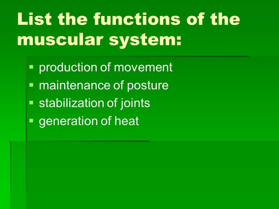 List the functions of the muscular system: