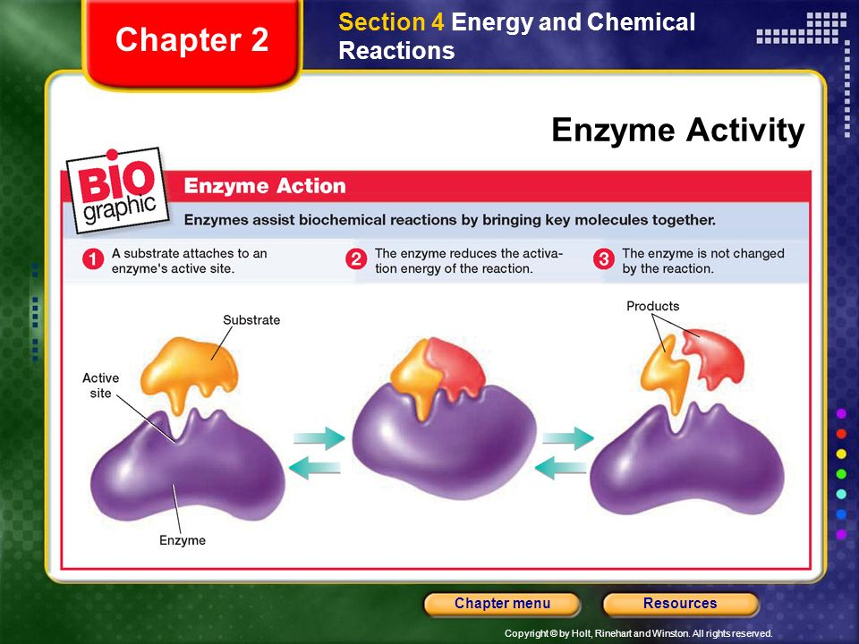 Section 4 Energy and Chemical Reactions