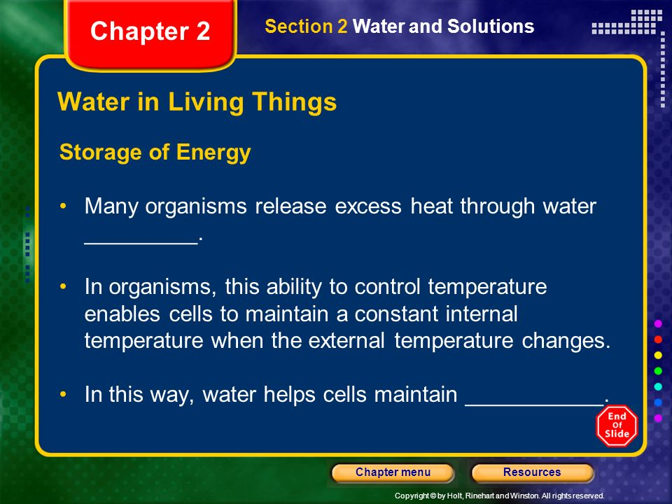 Chapter 2 Water in Living Things Storage of Energy