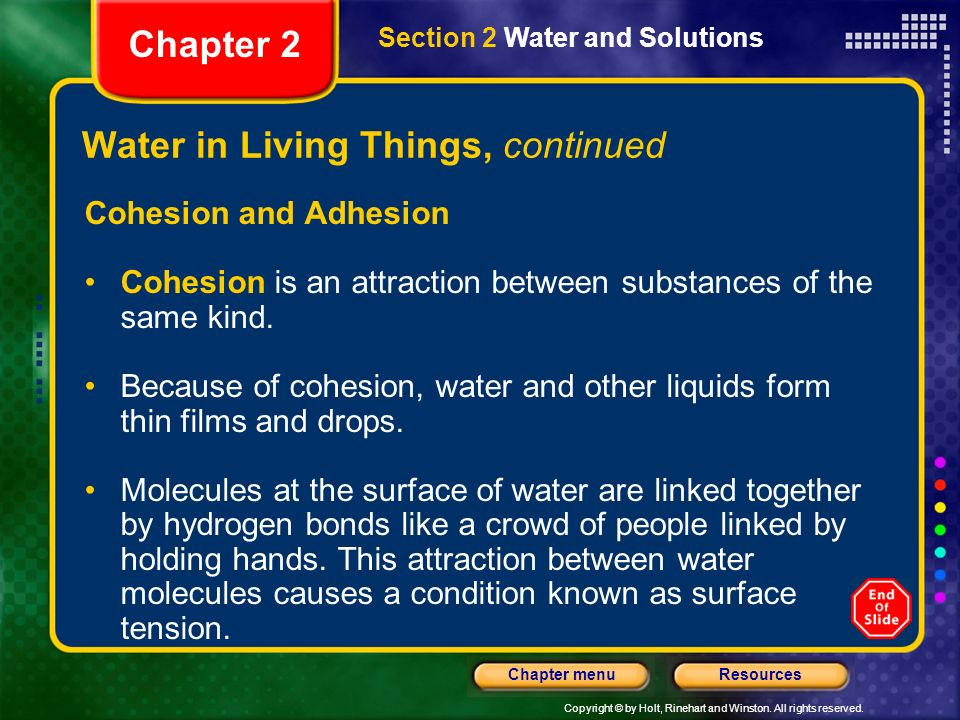 Water in Living Things, continued