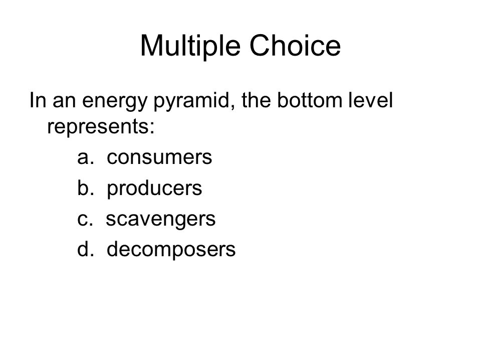 BIG Ecology Test Tomorrow Ppt Download