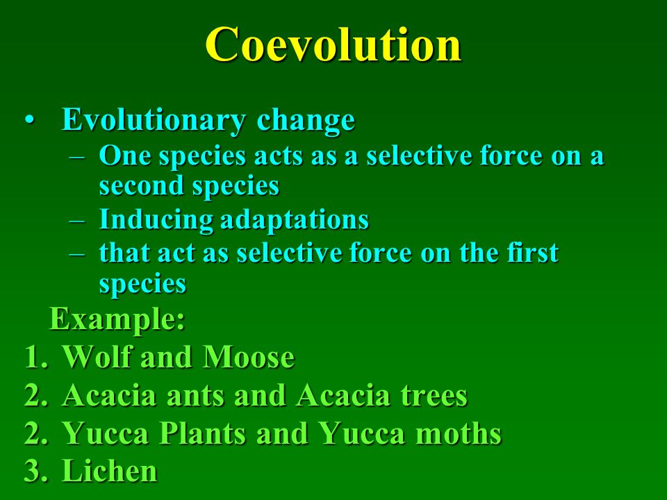evolution, biodiversity, and community processes - ppt download