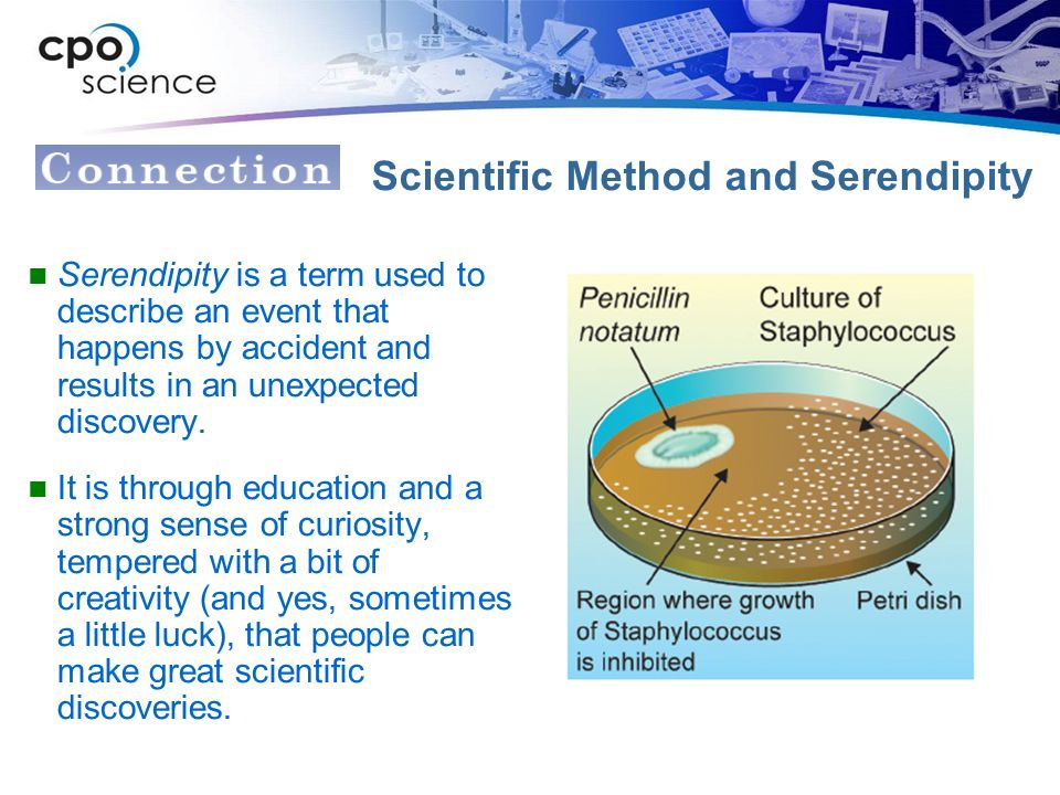 Scientific Method and Serendipity