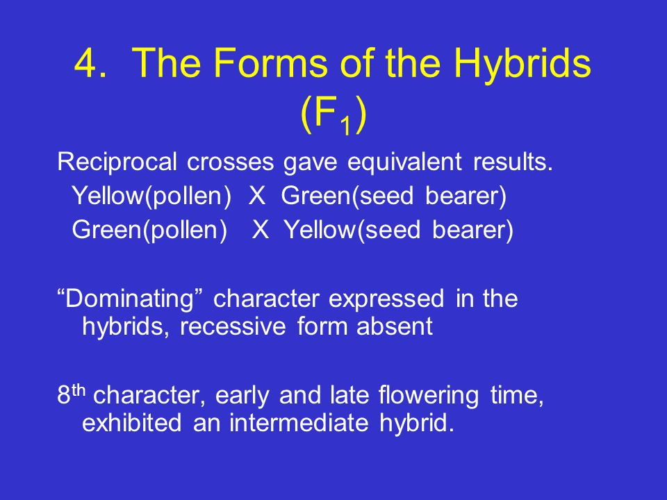 4. The Forms of the Hybrids (F1)
