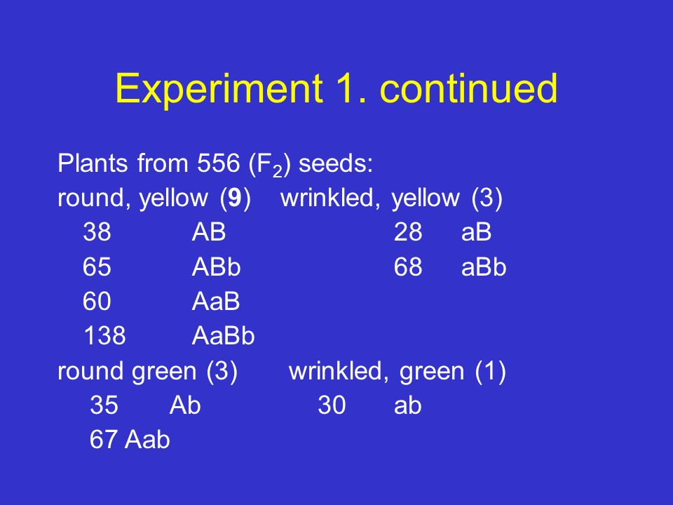 Experiment 1. continued Plants from 556 (F2) seeds: