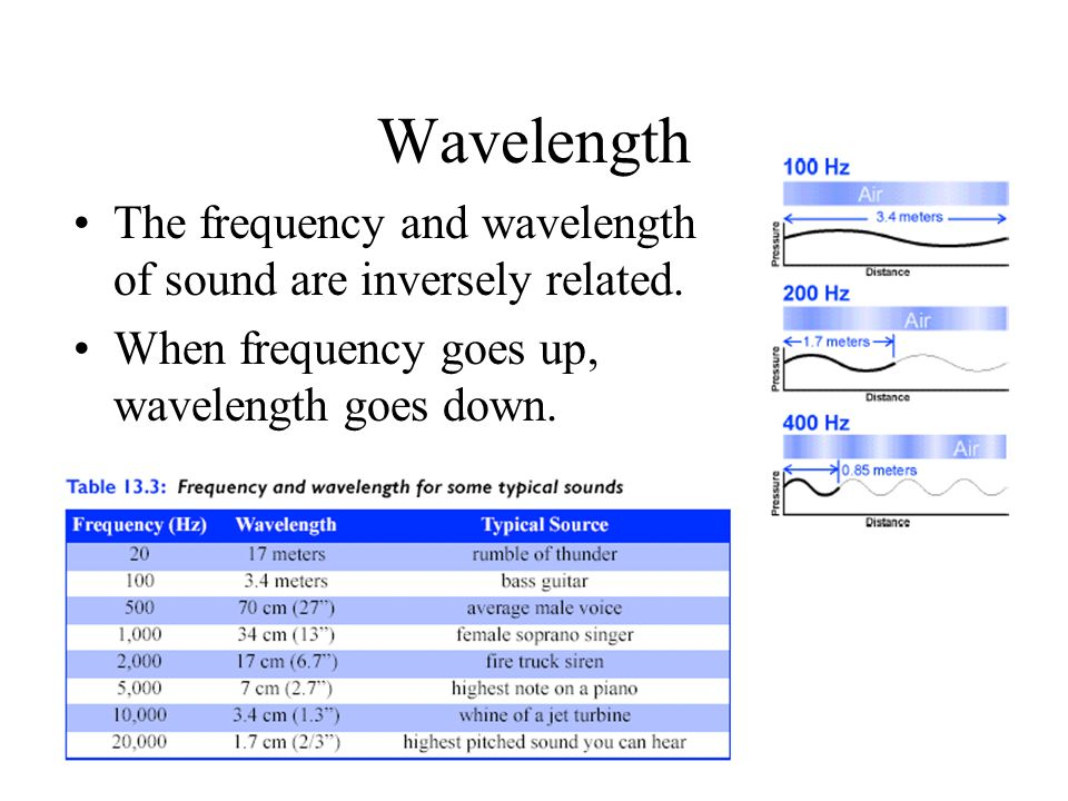 Wavelength The frequency and wavelength of sound are inversely related.