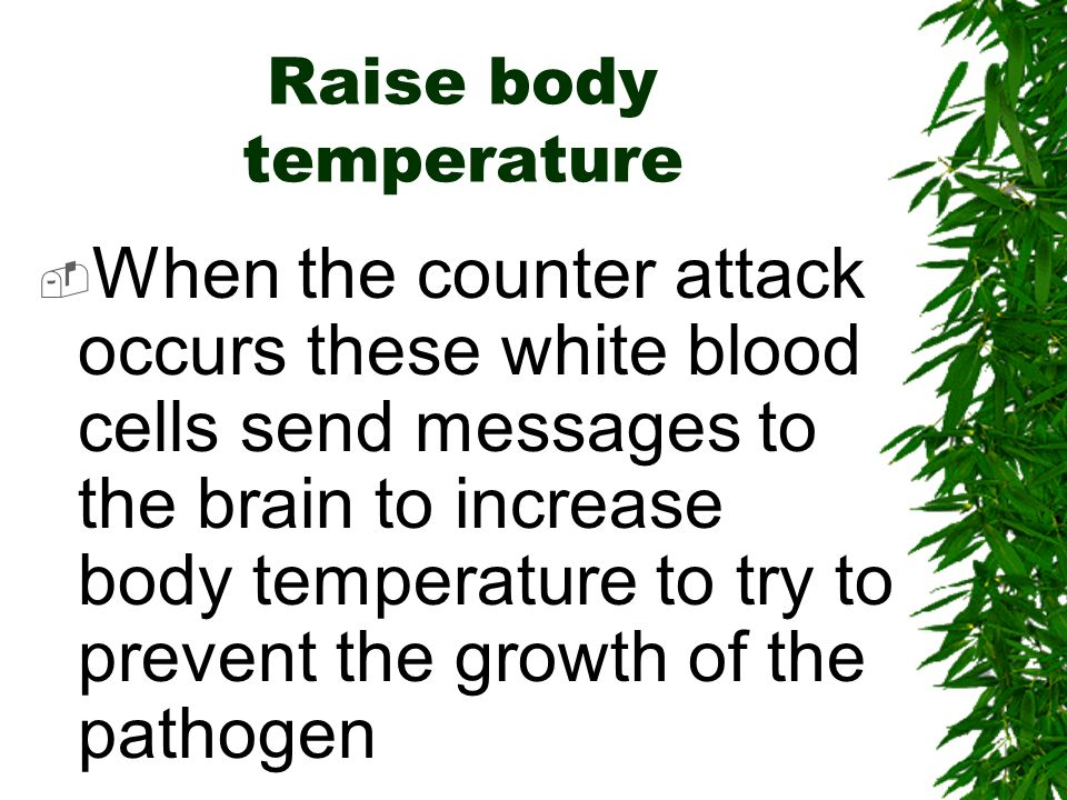 Raise body temperature