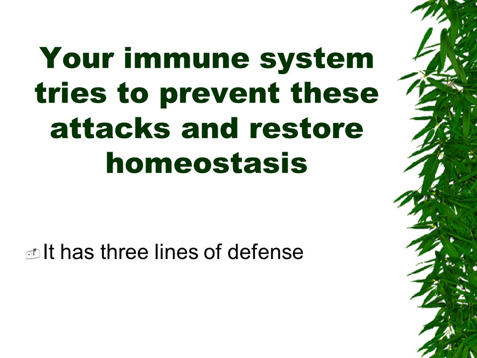 Your immune system tries to prevent these attacks and restore homeostasis