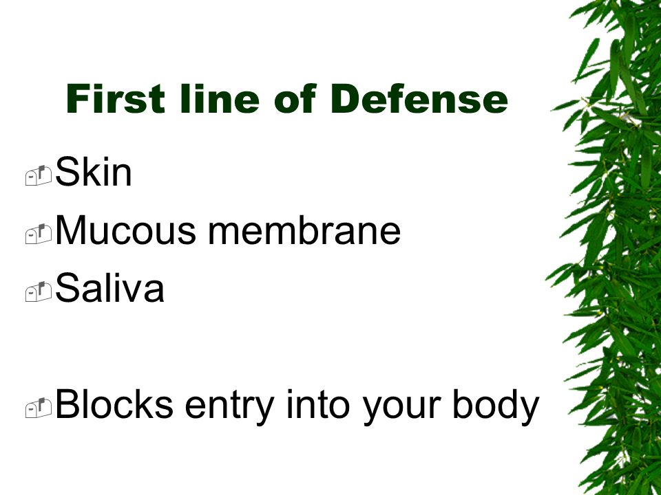 First line of Defense Skin Mucous membrane Saliva Blocks entry into your body