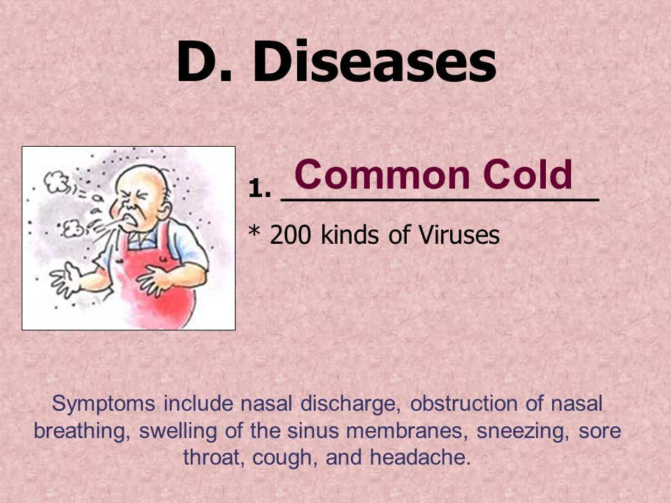 D. Diseases Common Cold ___________________ * 200 kinds of Viruses