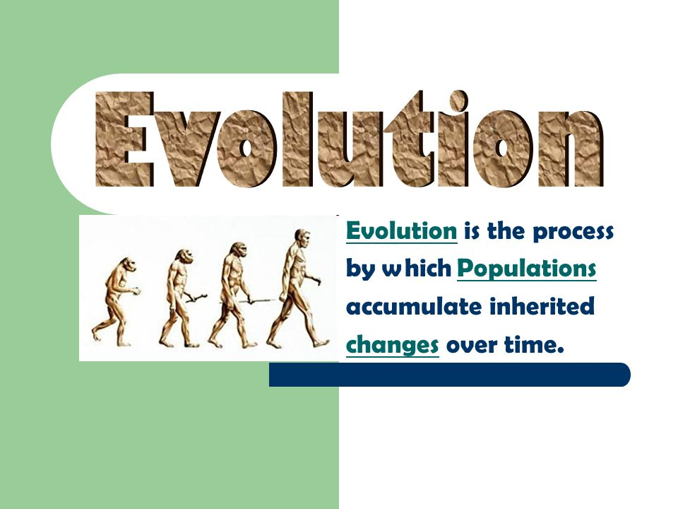 Evolution Evolution is the process by which Populations